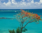 bilder - tropical-reisen